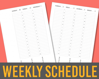 Weekly Planner Appointment Schedule Layout